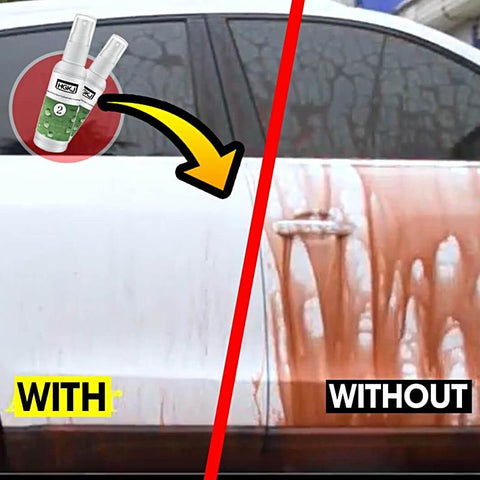 Hydrophobic Car Coating
