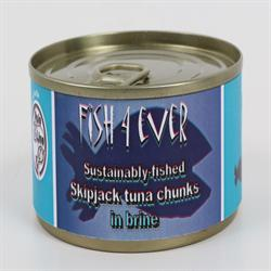Skipjack Tuna Chunks in Brine 160g (order in singles or 15 for trade outer)