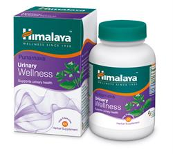 Punarnava Urinary Wellness 60 Tablets (order in singles or 72 for trade outer)