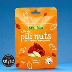 Activated Pili Nuts Snack Pack - Turmeric & Ginger (22g) (order in singles or 12 for trade outer)
