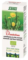 Dandelion Organic Fresh Plant Juice 200ml (order in singles or 16 for trade outer)