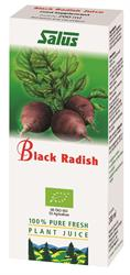 Black Radish Organic Fresh Plant Juice 200ml (order in singles or 16 for trade outer)