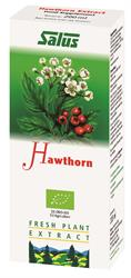Hawthorn Organic Fresh Plant Juice 200ml (order in singles or 16 for retail outer)