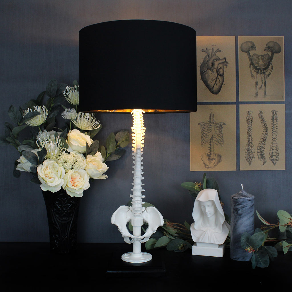 The White Spine Lamp