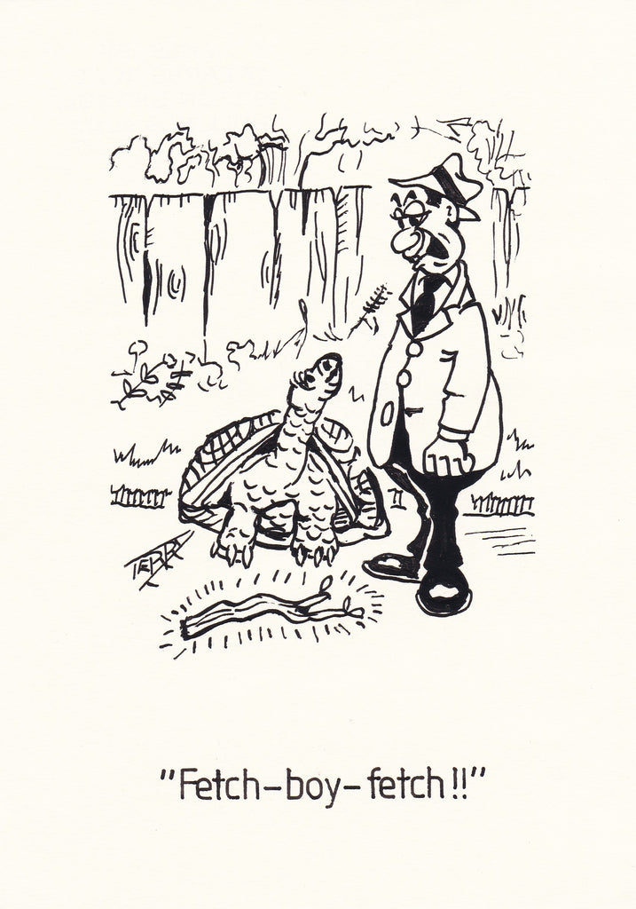 Tortoise Training Hand Drawn Cartoon Drawing