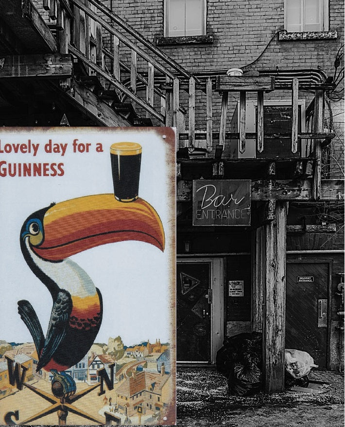guinness toucan vintage metal sign