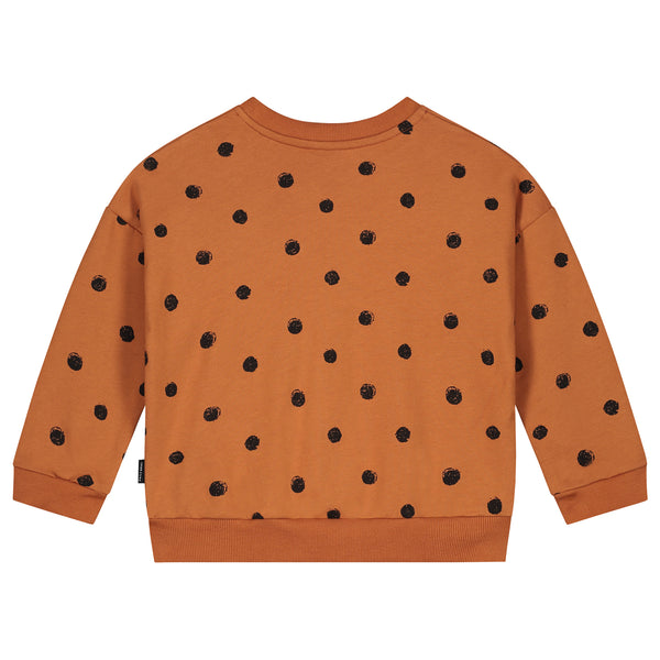 PAINTED POLKA OVERSIZED SWEATER COLOMBIA BROWN