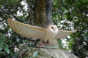 flying barn owl statue for sale