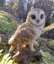 Load image into Gallery viewer, barn owl on a branch statue for sale