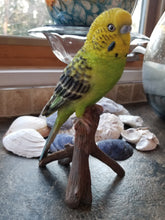Load image into Gallery viewer, budgie on a branch statue