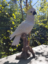 Load image into Gallery viewer, cockatoo on a branch statue
