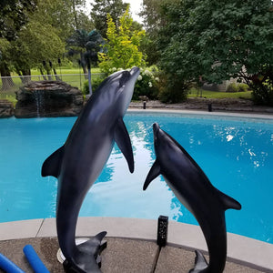 dolphin statue pair poolside pose