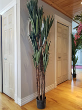 Load image into Gallery viewer, dracaena silk tree for sale