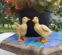 Load image into Gallery viewer, duckling pair statues