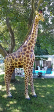 Load image into Gallery viewer, lifesize giraffe statue in full view