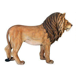 life size lion statue in right pose