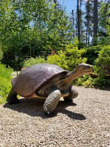 large turtle statue right pose
