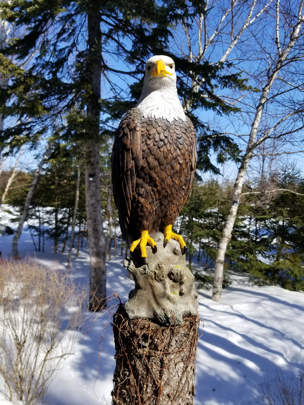 bald eagle statue for sale
