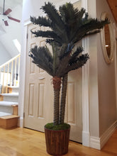 Load image into Gallery viewer, double sago palm tree in bamboo wood planter for sale