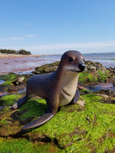 Load image into Gallery viewer, baby seal statue for sale