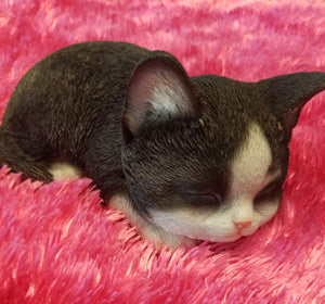 Sleeping Black and White Kitten Ornament