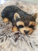 Load image into Gallery viewer, sleeping yorkshire terrier puppy dog ornament