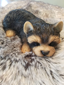 sleeping yorkshire terrier puppy dog ornament