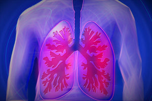 CBD treats lung inflammation