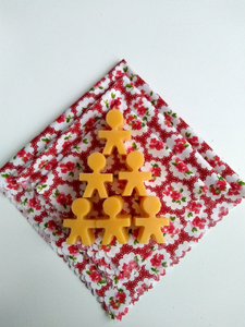 DIY Beeswax Food Wrap Kit-Red Floral