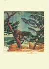 Gustave Baumann Pacific Card Set