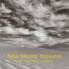 New Mexico Treasure 2021 Engagement Calendar
