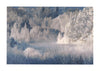 Mystical Moment Holiday Boxed Card Set