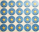 Sheet of well done blue and gold star stickers