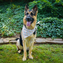 Load image into Gallery viewer, The Pawty Bandana