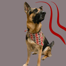 Load image into Gallery viewer, The Brutus Bandana