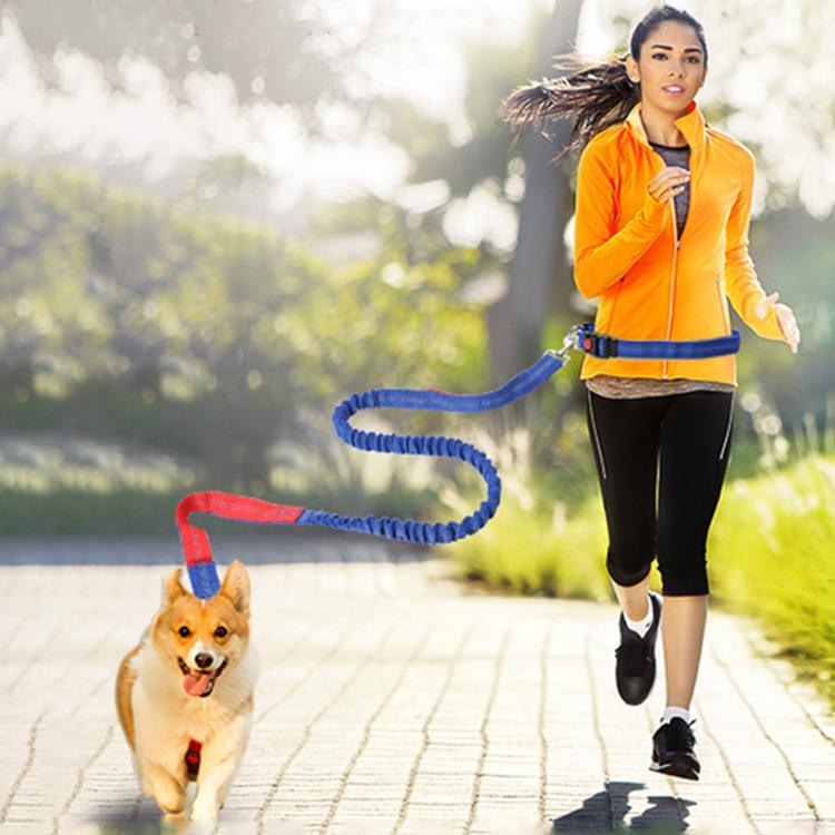 Hands Free Dog Leash Blue+Red Trendy Joys