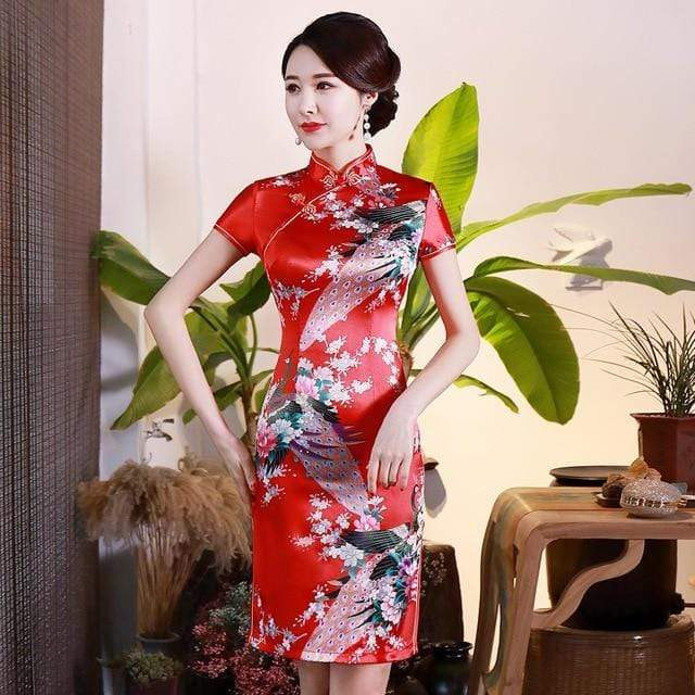 Traditional Satin Chinese Dress Style D / S Trendy Joys