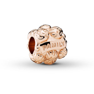 Authentic Pandora Rose 'Love & Family' Retired Charm 781039-infinitote.com