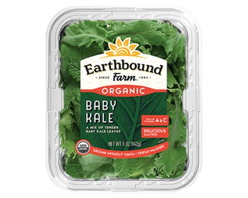 Earthbound Baby Kale