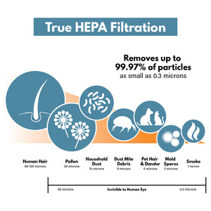 True HEPA Filter Particle Size