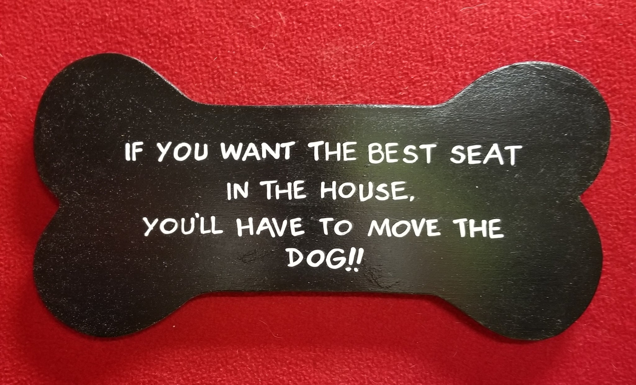 If you want the best seat in the house, you'll have to move the dog!