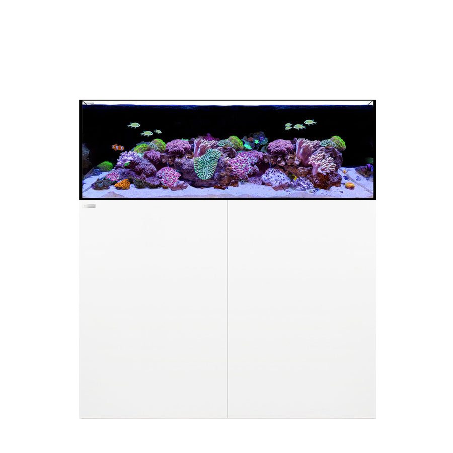 WATERBOX FRAG 105.4 WHITE