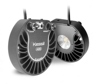 Kessil A80 LED - Tuna Sun (INCLUDES FREE MINI GOOSENECK)