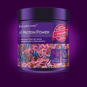 AF Protein Power AVAILABLE TO ORDER!