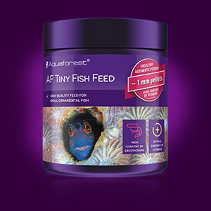 AF Tiny Fish Food AVAILABLE TO ORDER!
