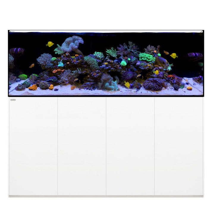 WATERBOX REEF PRO 220.6 WHITE