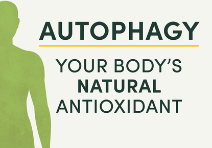 Self Detox with Autophagy