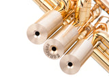 Trumpet EXTRA HEAVY Trim kits