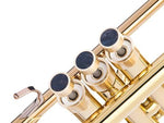 Trumpet HEAVY Trim kit. KGUBrass Raw Brass / Nuummite  Trumpet: Yamaha FLUGELHORN (All models)