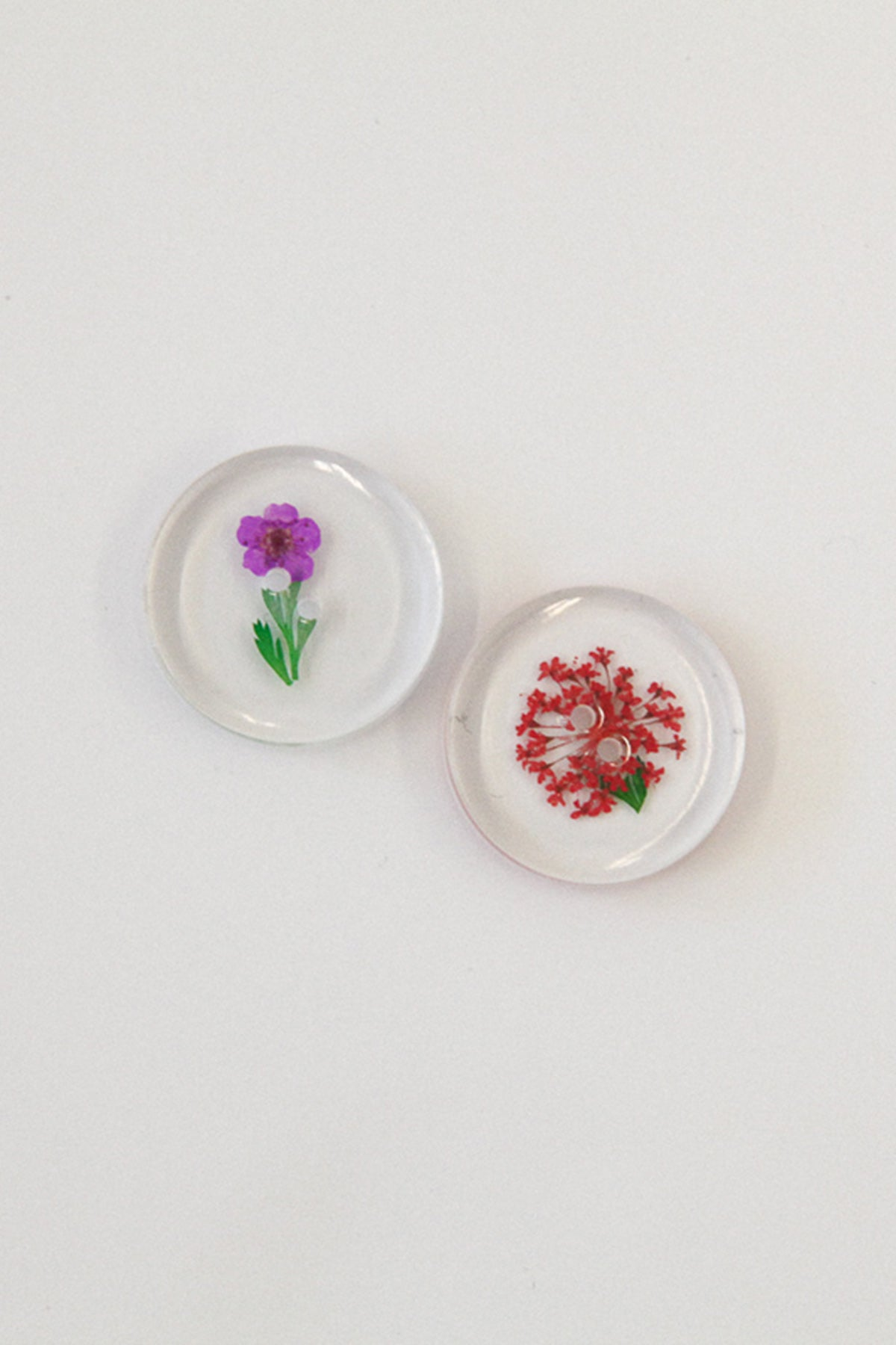 Flower Pressed Lucite Buttons - Round